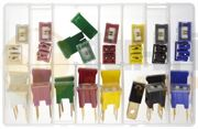 Assorted Pal Fuses (male & female)